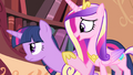 Cadance 'It's going to be fine' S4E11.png