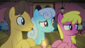 Caramel, Shoeshine, and Cherry Berry confused S8E3.png