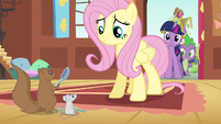 Fluttershy a hard time S3E13