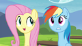 Fluttershy explain what races Tank, Winona and Gummy play as S4E21.png