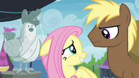 Fluttershy trying to dissuade Coco Crusoe S4E22