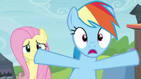 """Rainbow """"you've gotta open your stand"""" S4E22"""