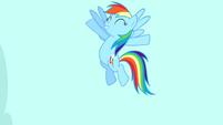 Rainbow Dash -exactly!- S4E12