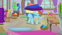 Rainbow Dash carrying fabric for Rarity S9E19