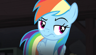 Rainbow Dash unamused S5E1