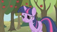 Twilight even more worried S1E04
