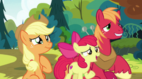 Apple Bloom -anything else-- S7E13