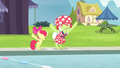 Apple Bloom and Granny about to jump into the pool S4E20.png