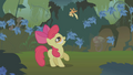 Apple Bloom tosses Applejack in the air S1E09.png