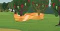 Applejack figure eights trees S3E8.png