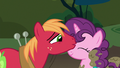 Big Mac kissing Sugar Belle on the nose S8E10.png