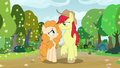 Bright Mac and Pear Butter walking in spring S7E13.png