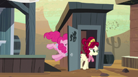 Cherry Jubilee comes out of bathroom; door accidentally hits Pinkie S5E11