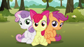 Cutie Mark Crusaders back on the ground S6E19.png