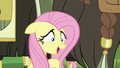 """Fluttershy """"Thank goodness"""" S5E11.png"""