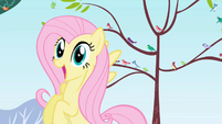 Fluttershy -A baby dragon!- S01E01