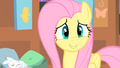 Fluttershy smiles S1E17.png