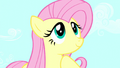 Fluttershy smiling S5E13.png