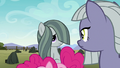 Limestone and Marble look at each other S8E3.png