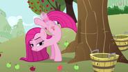 Pinkie Pie left leg intangibility S3E13
