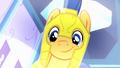 Pony Flash smiling EG.png