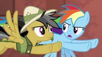 "Rainbow Dash ""if Quibble says go over him"" S6E13"