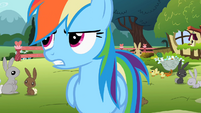 Rainbow Dash 'like I was saying' S2E07