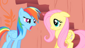 Rainbow Dash and Fluttershy S01E16.png