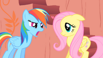 Rainbow Dash and Fluttershy S01E16