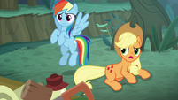 Rainbow and AJ confused by Rarity's behavior S8E13