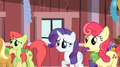 Rarity AppleBumpkin shocked S02E14.png