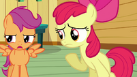 Scootaloo 'Why bother' S3E04