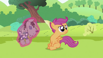 Scootaloo and Smarty Pants S2E03