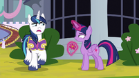Shining Armor skeptical of Twilight S9E4