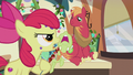 "Apple Bloom ""that's your boring sisterly lecture voice"" S5E20.png"
