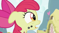 Apple Bloom tells the truth S2E06.png