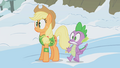 ApplejackAndSpikeAboutToBeHit S01E11.png
