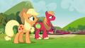Applejack and Big Mac watch the clones leave S3E03.png