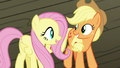 Applejack and Fluttershy impressed by trapeze act S6E20.png