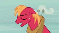 Big McIntosh -she's a real pony- S7E8