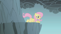 Fluttershy prepares to jump S1E07.png