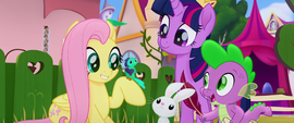"Fluttershy sings ""you got this"" to a bird MLPTM"