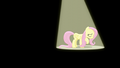 Fluttershy sings under a spotlight S6E11.png