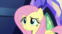 Fluttershy watches Zephyr speed away S6E11