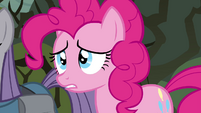 Pinkie Pie 'what's wrong' S4E18