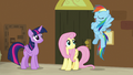 """Rainbow Dash """"I knew we were the best!"""" S7E2.png"""