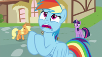 "Rainbow Dash ""how many pies you've made for me"" S7E23"