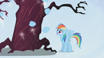 Rainbow Dash laughing at a tree S1E02