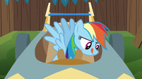 Rainbow Dash working on speed cart S6E14