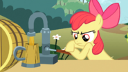 S02E15 Apple Bloom nalewa sok